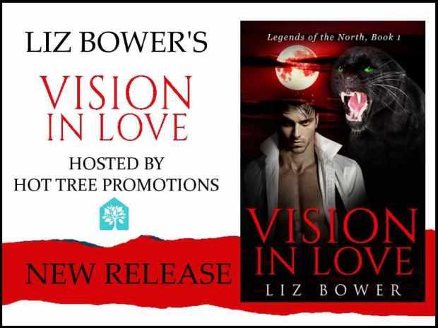 BLITZ BANNER Vision in Love.jpg